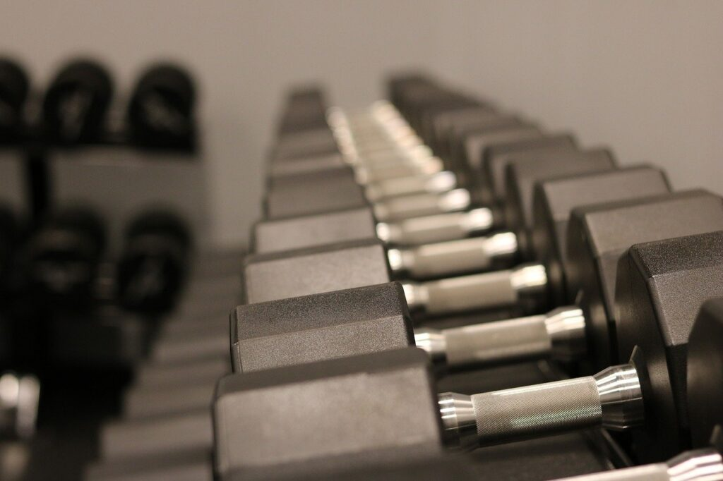 weights, dumbbells, exercise-3483560.jpg